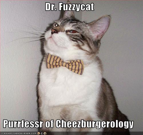 Cheezburger Image 1854348032