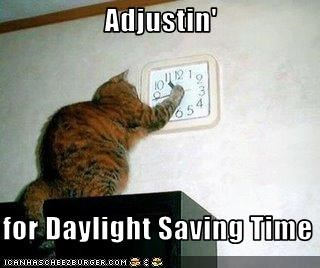 Image result for day light saving time cat funny