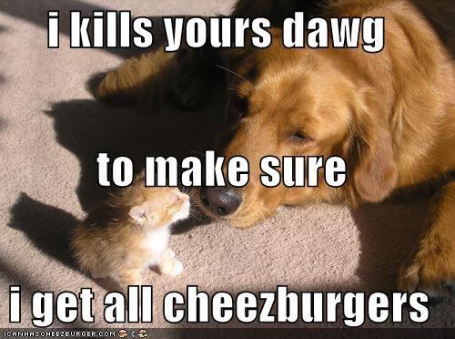 Cheezburger Image 1855899904