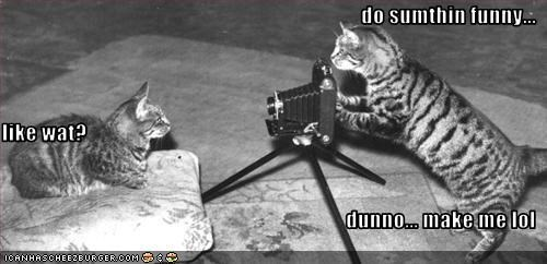 camera funny photography - 1865680128
