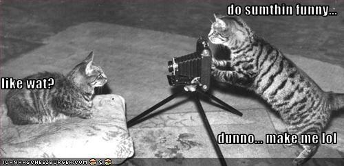 camera funny photography - 1865680128