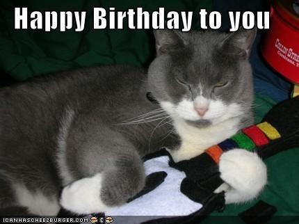 happy birthday meme with a cat playing a fake guitar