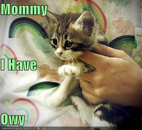 Mommy I Have Owy