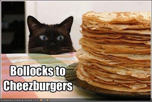 Cheezburger Image 1868736256