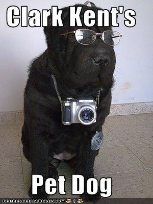 Clark Kent's  Pet Dog