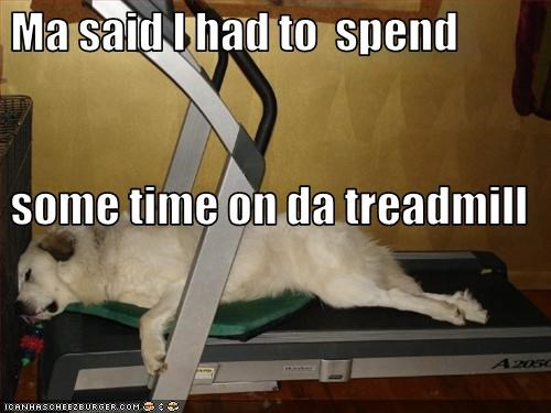 exercise,mom,sleeping,treadmill,whatbreed
