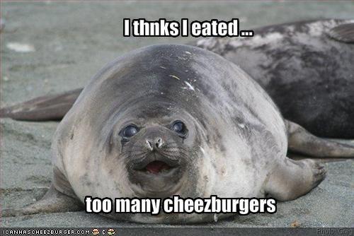 Cheezburger Image 1881495808