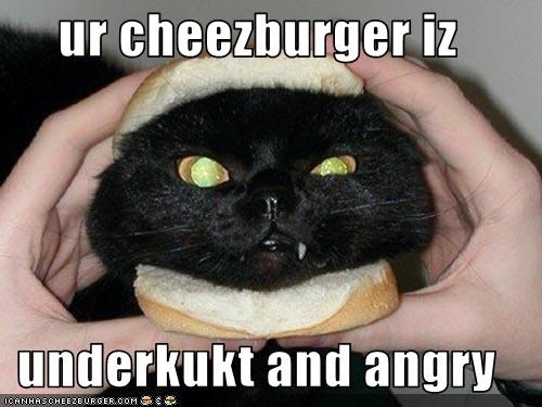 Cheezburger Image 1890049792