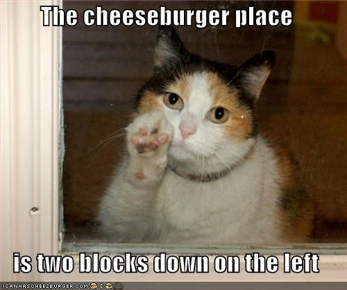 Cheezburger Image 1893612288