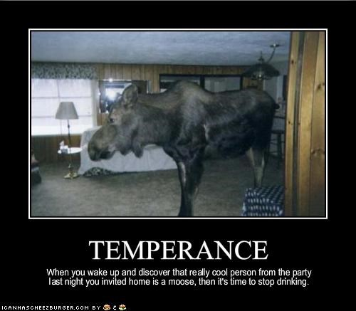 Image result for temperance memes