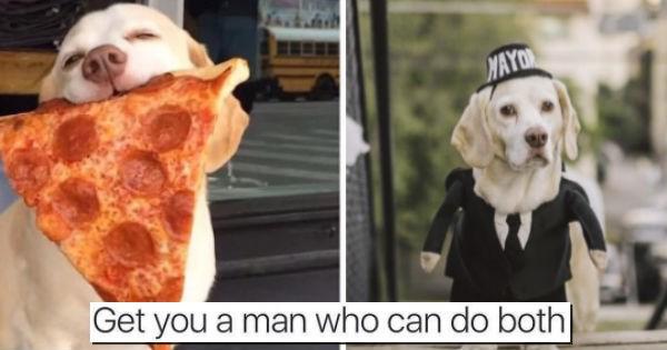 Austin dogs mayor texas pizza - 1903877
