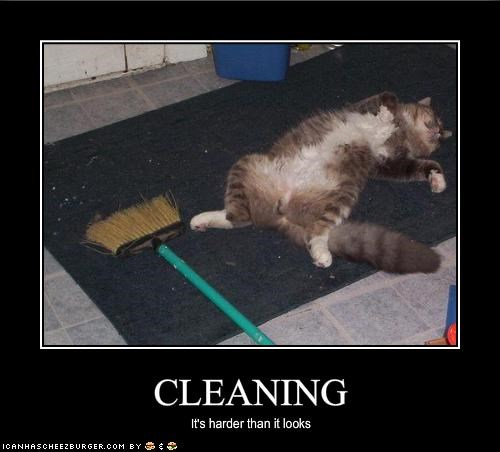 cleaning,dead,lazy