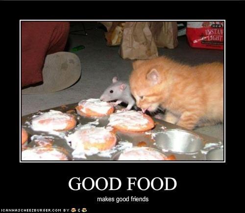 Cheezburger Image 1913076992
