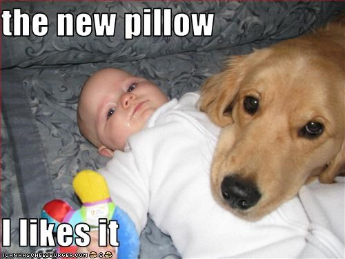 baby cuddles golden retriever human Pillow