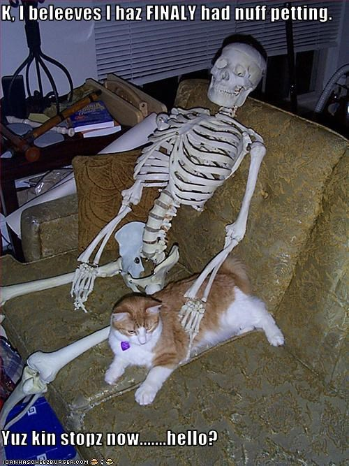 murder,petting,skeleton