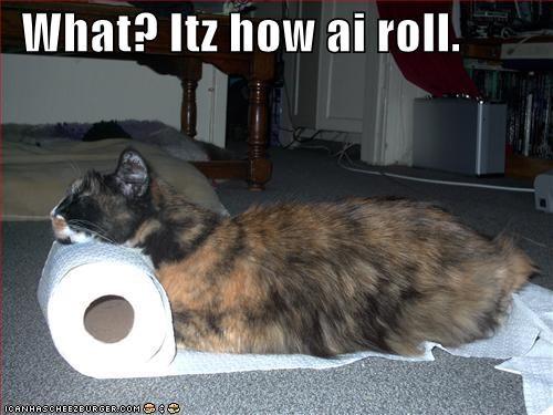 joke roll toilet paper - 1925843712