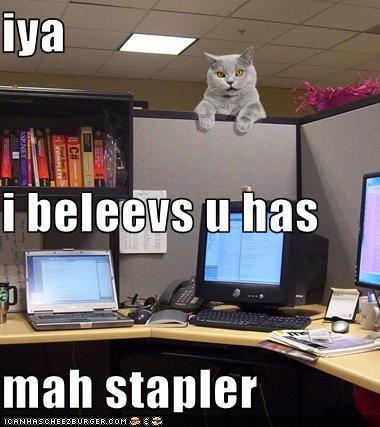 iya i beleevs u has mah stapler