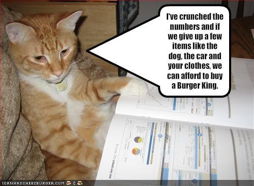 Cheezburger Image 1931513088