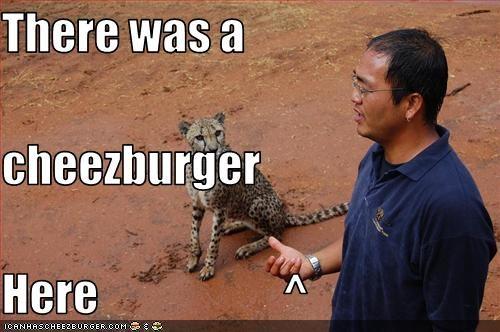 Cheezburger Image 1932829440