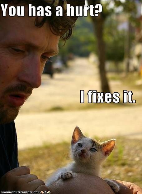 helping kitten love - 1935270656