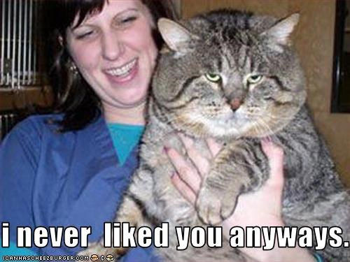 I Never Liked You Anyways Cheezburger Funny Memes Funny Pictures