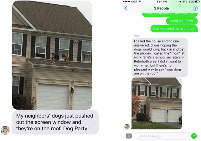 This Text About Dogs Throwing Crazy Rager On a Roof Is Best Text-From-Mom We've Ever Seen