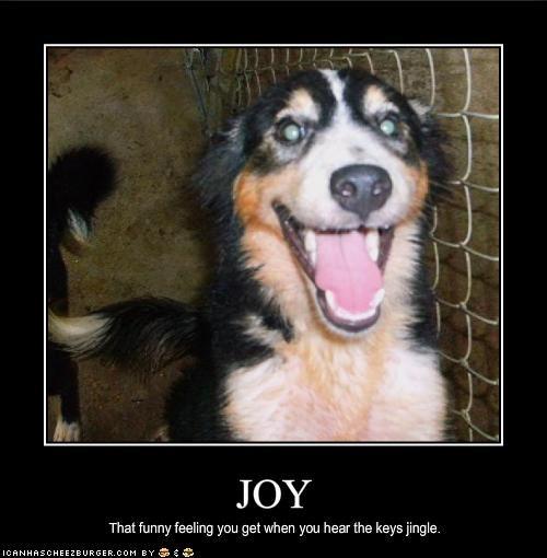 happy Joy keys whatbreed - 1945907968