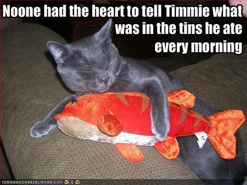 murder,nom nom nom,snuggling,stuffed animal,tuna