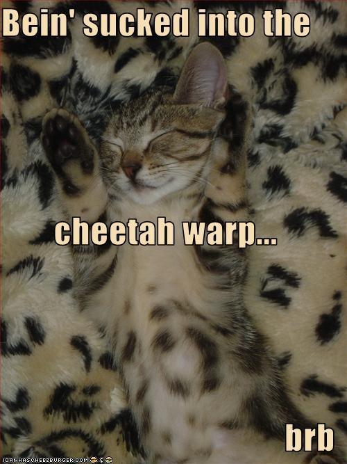 Bein' sucked into the cheetah warp... brb