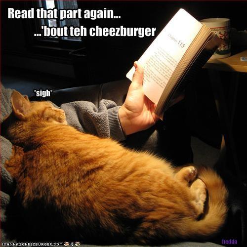 books cheezburger ginger reading - 1959937792