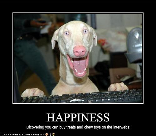 buy,chew,happy,internet,toys,treats,weimaraner