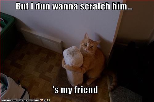 cute friend nice scratching posts - 1964157696