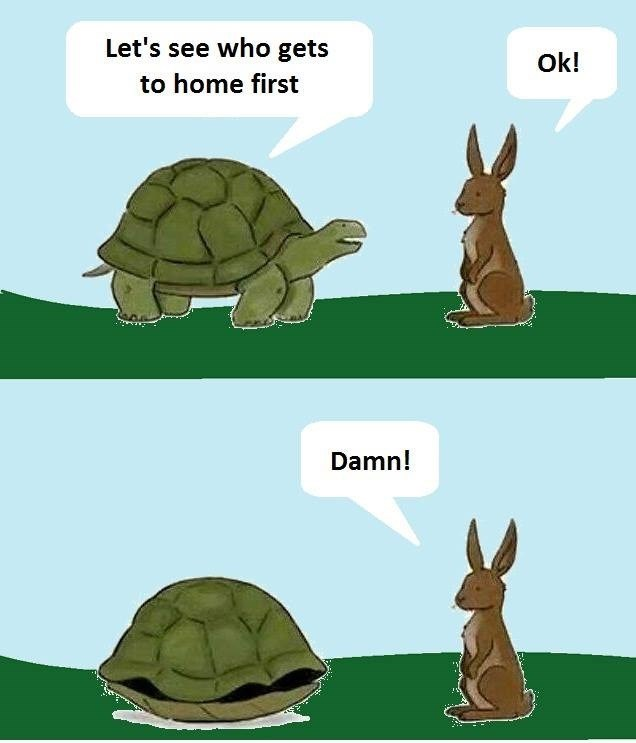smart Memes funny animals - 1972485