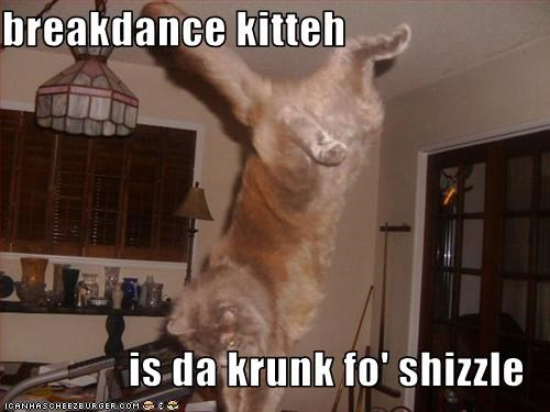 Breakdance Kitteh Is Da Krunk Fo Shizzle Cheezburger Funny