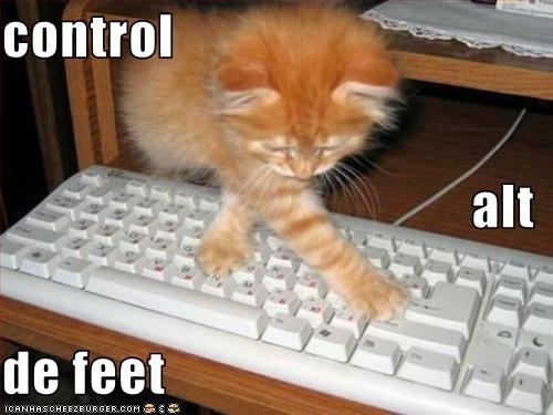 computer keyboard - 1985149184