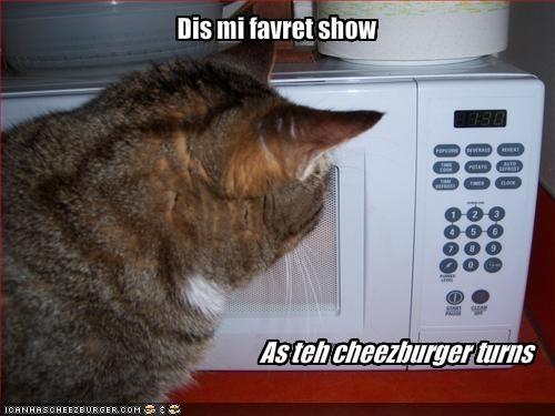 cheezburger microwave nom nom nom TV - 1988467968