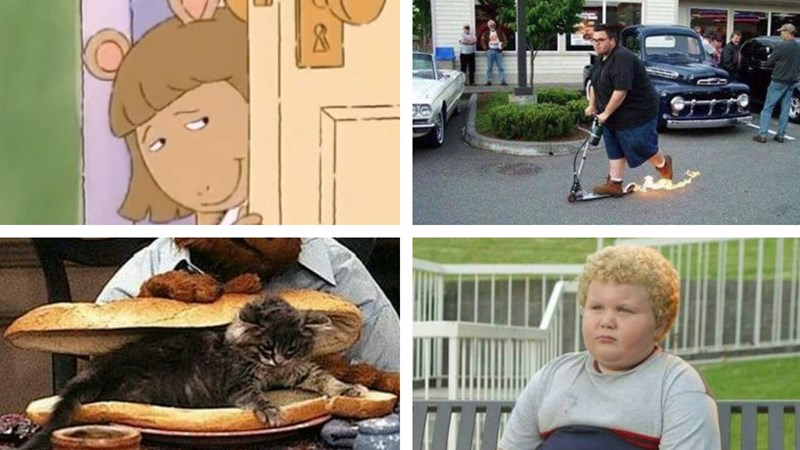 Meme dump TGIF edition, lunchables, arthur, DW, cats getting fat, dating, making fun of vegans.