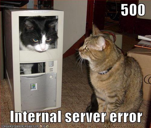 500 Internal Server Error Cheezburger Funny Memes Funny Pictures
