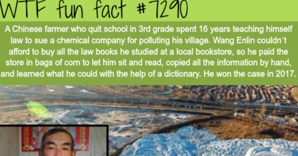wtf interesting facts