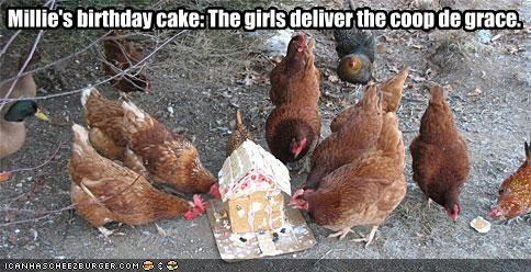 Millie's birthday cake: The girls deliver the coop de grace.