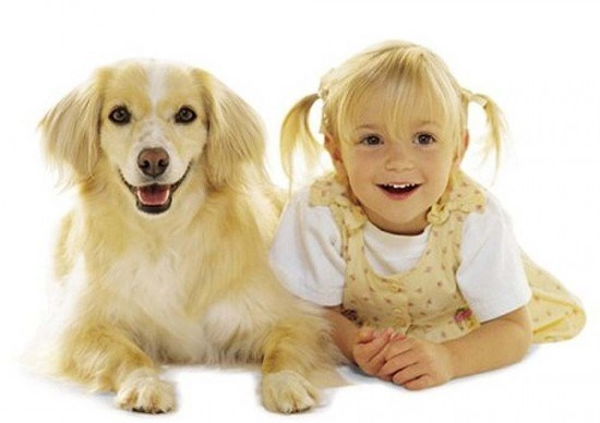 dogs kids totally looks like owners funny - 2004229