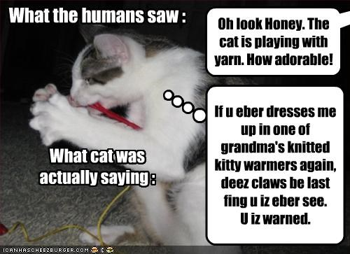 Cleverness Here If u eber dresses me up in one of grandma's knitted kitty warmers again, deez claws be last fing u iz eber see. U iz warned. Oh look Honey. The cat is playing with yarn. How adorable! What cat was actually saying : Cleverness Here What the humans saw :