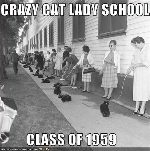 crazy cat lady,leash,school