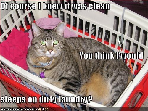laundry nap - 2021136128