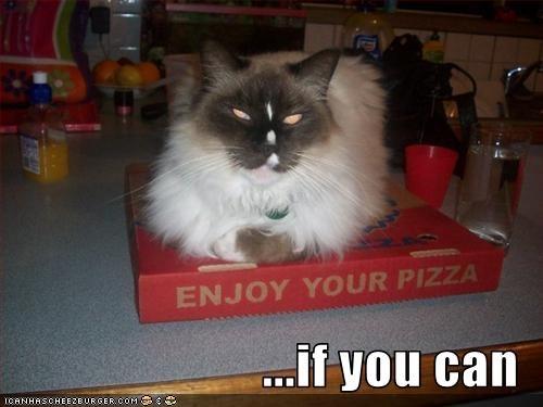 fud pizza threats - 2025333504