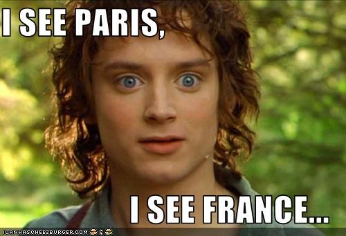 I See Paris I See France Cheezburger Funny Memes Funny