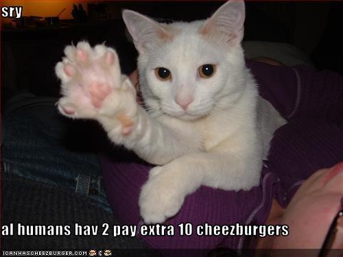 Cheezburger Image 2027508480