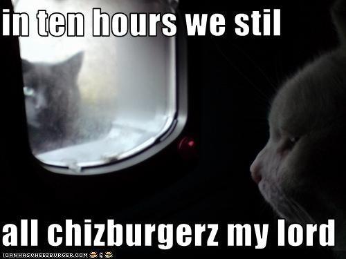 Cheezburger Image 2032077568