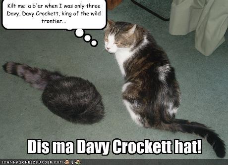 Dis ma Davy Crockett hat! Kilt me a b'ar when I was only three Davy, Davy Crockett, king of the wild frontier...