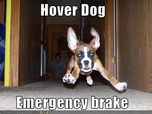 boxer,brakes,emergency,hover dog,hoverdog